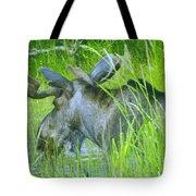 A Bull Moose Wading His Pond Tote Bag