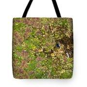 A Bullfrog Rana Catesbeiana Hiding Tote Bag