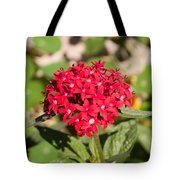 A Bunch Of Small Red Flowers Tote Bag