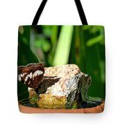 A Butterfly Enjoys A Drink Tote Bag
