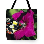 A Butterfly Lands On A Pink Flower Tote Bag