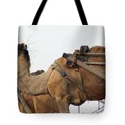 A Camel Foraging For Food In A Desert Environment Tote Bag