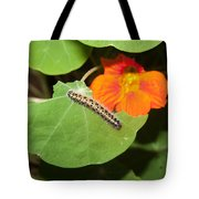 A Caterpillar Eating The Leaves Of A Plant With A Beautiful Orange Flower Tote Bag