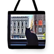 A Cat's View Tote Bag by Joan Meyland