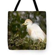A Cattle Egret Bubulcus Ibis Tote Bag