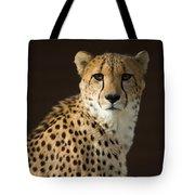 A Cheetah Acinonyx Jubatus Urinates Tote Bag