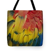 A Close-up View Of A Parrots Rainbow Tote Bag