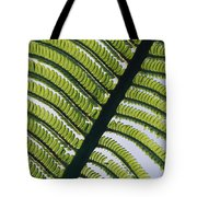A Close View Of A Fern Tote Bag