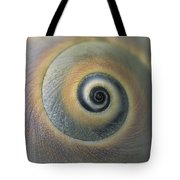 A Close View Of A Moon Snail Shell Tote Bag