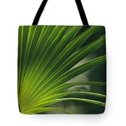 A Close View Of A Palm Frond Tote Bag