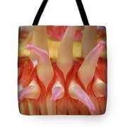 A Close View Of A Red Sea Anemones Tote Bag