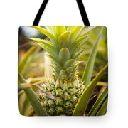 A Close View Of A Tainung Pineapple Tote Bag