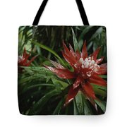A Close View Of A Tropical, Red Flower Tote Bag