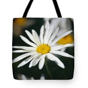 A Close View Of A Wild Daisy Tote Bag