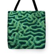 A Close View Of Bright Green Brain Tote Bag
