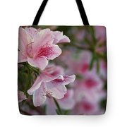 A Close View Of Pink Azalea Blossoms Tote Bag