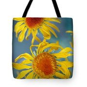 A Close View Of Two Daisies Tote Bag
