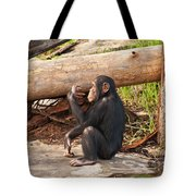 A Contemplative Youngster Tote Bag