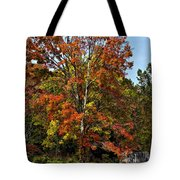 A Country Place Painted Tote Bag