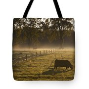 A Cow Grazing In A Field In The Early Tote Bag
