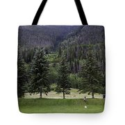 A Day At The Park In Vail Tote Bag