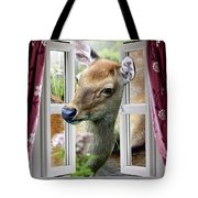A Deer Enters The House Window. Tote Bag