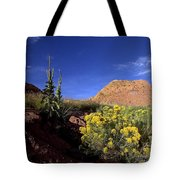 A Desert Landscape With Rock Formations Tote Bag