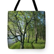 A Dirt Path Winds Through A Waterside Tote Bag