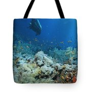 A Diver Explores Coral And Marine Life Tote Bag