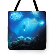A Diver Hovers Inside The Archway As Tote Bag