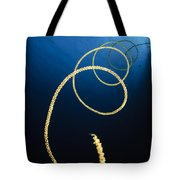 A Diver Swims Above A Whip Coral Tote Bag