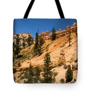 A Dragon Over Water Canyon Tote Bag
