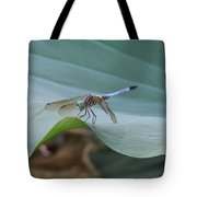 A Dragonfly Resting On A Lily Pad Tote Bag