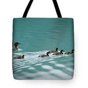 A Family Of Merganser Ducks Swim Tote Bag