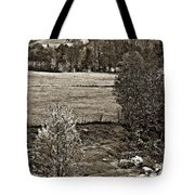 A Far Valley Sepia Tote Bag