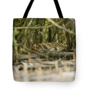 A Female Tiger Rests In The Undergrowth Tote Bag