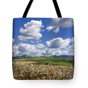 A Field Of Barley . Auvergne. France Tote Bag