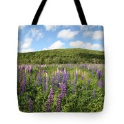 A Field Of Lupines Tote Bag