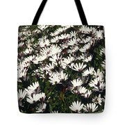 A Field Of Prolofic White Daisy Flowers Tote Bag