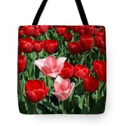 A Field Of Tulips Series 3 Tote Bag