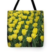 A Field Of Yellow Tulips In Spring Tote Bag