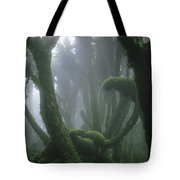A Fog-enshrouded Rain Forest In Rwandas Tote Bag