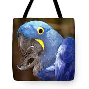 A Foot In Its Mouth Tote Bag