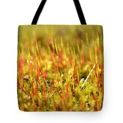 A Forest Of Moss II Tote Bag