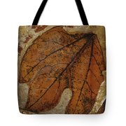 A Fossilized  Sassafras Leaf Tote Bag