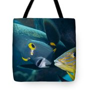 A French Angelfish Swims Up Close Tote Bag