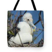 A Frigatebird Sitting In A Nest Tote Bag