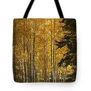A Golden Trail Tote Bag
