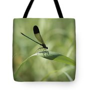 A Graceful Dragonfly Sitting On A Blade Tote Bag
