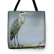 A Graceful Gray Heron Standing On A Log Tote Bag